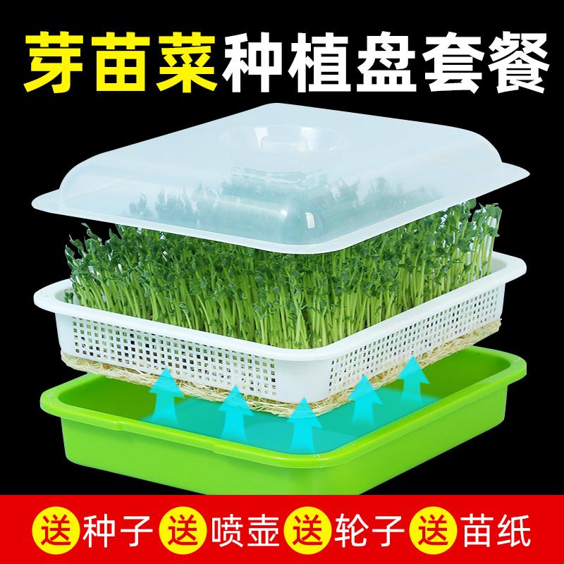 芽苗菜育苗托盘豆芽发芽盆豆苗种植无土栽培设备水培蔬菜芽菜小麦