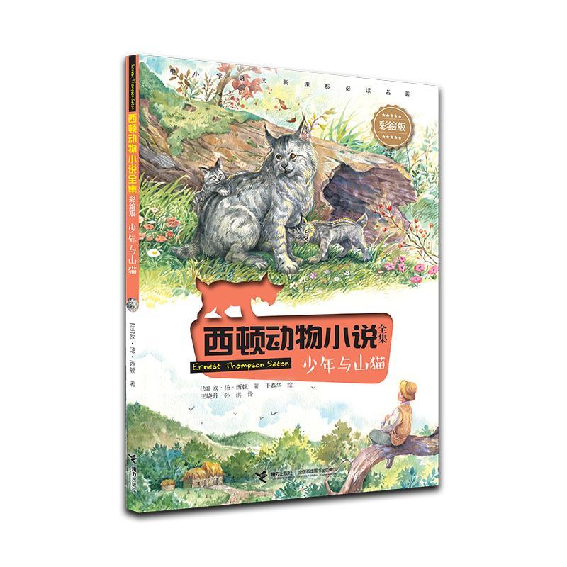 西顿动物小说彩绘版 少年与山猫 7-10-12岁少儿童文学故事 小学生一二三四五六年级课外阅读物书籍 儿童故事书小说图书 接力出版社