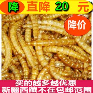 [凡字号幻宠阁饲料,零食]面包虫干500g包邮黄粉虫干包邮仓鼠yabo2288162件仅售18.9元