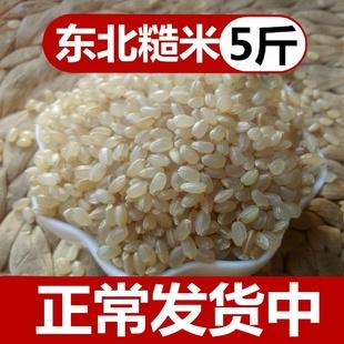 【5斤】新米糙米东北五常农家自产孕妇五谷杂粮健身低糖粗粮饭