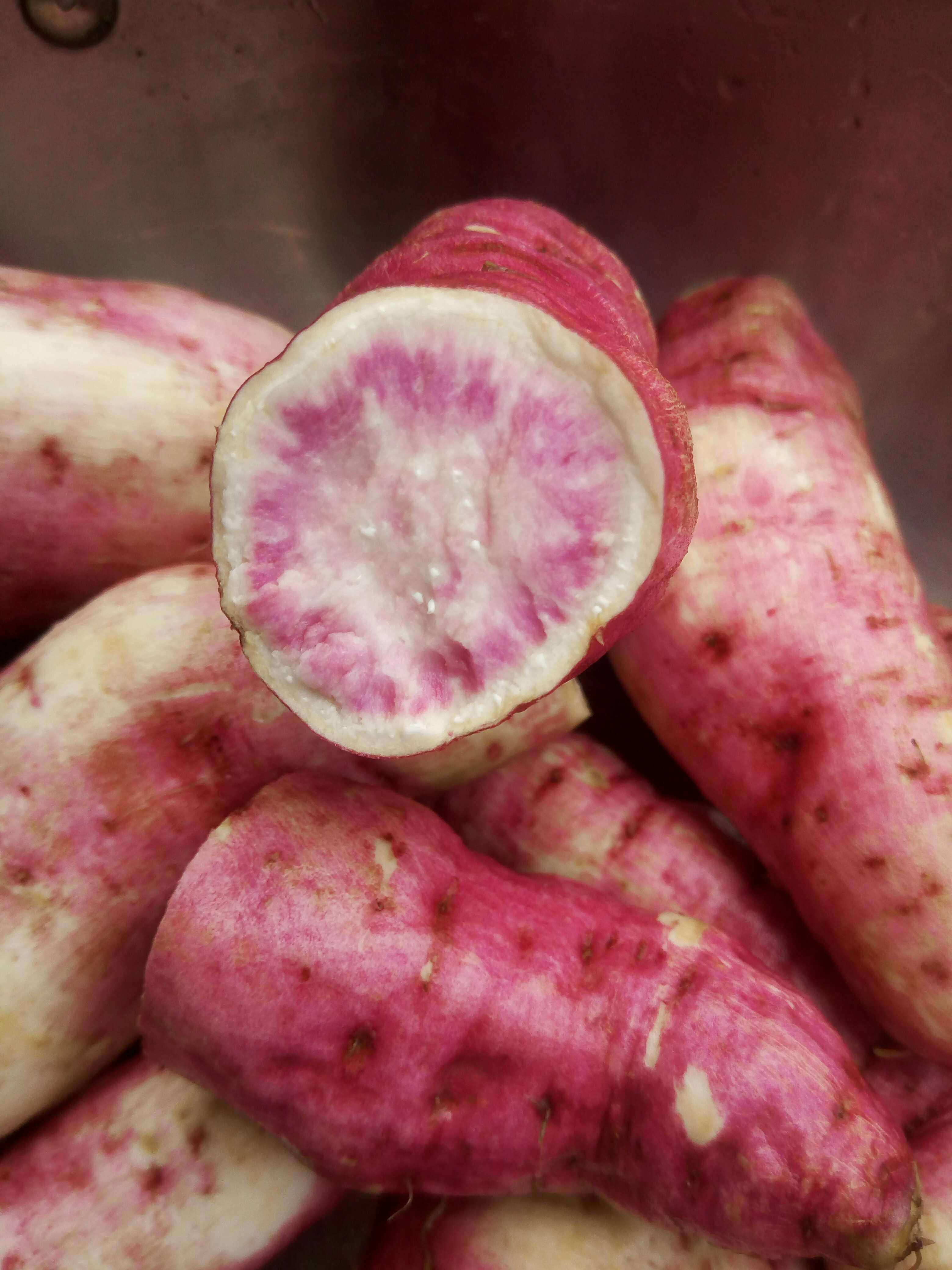 2019年山区沙地 老品种乌经苕花心红薯番薯乌红苕地瓜5斤包邮限8000张券