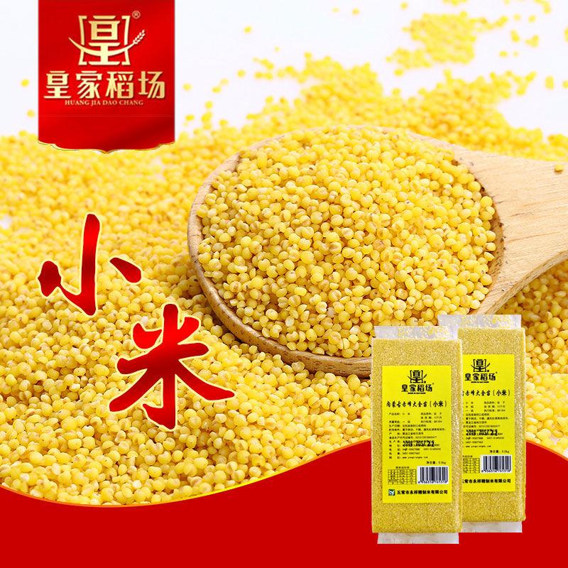 19年皇家稻场2斤大金苗吃的黄新米限10000张券