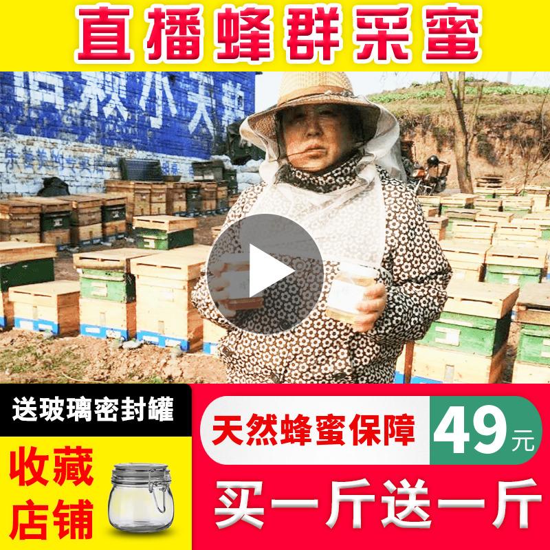 蜂蜜纯正天然农家自产蜂农自家养野生百花原蜜秦岭洋槐土蜂蜜2斤