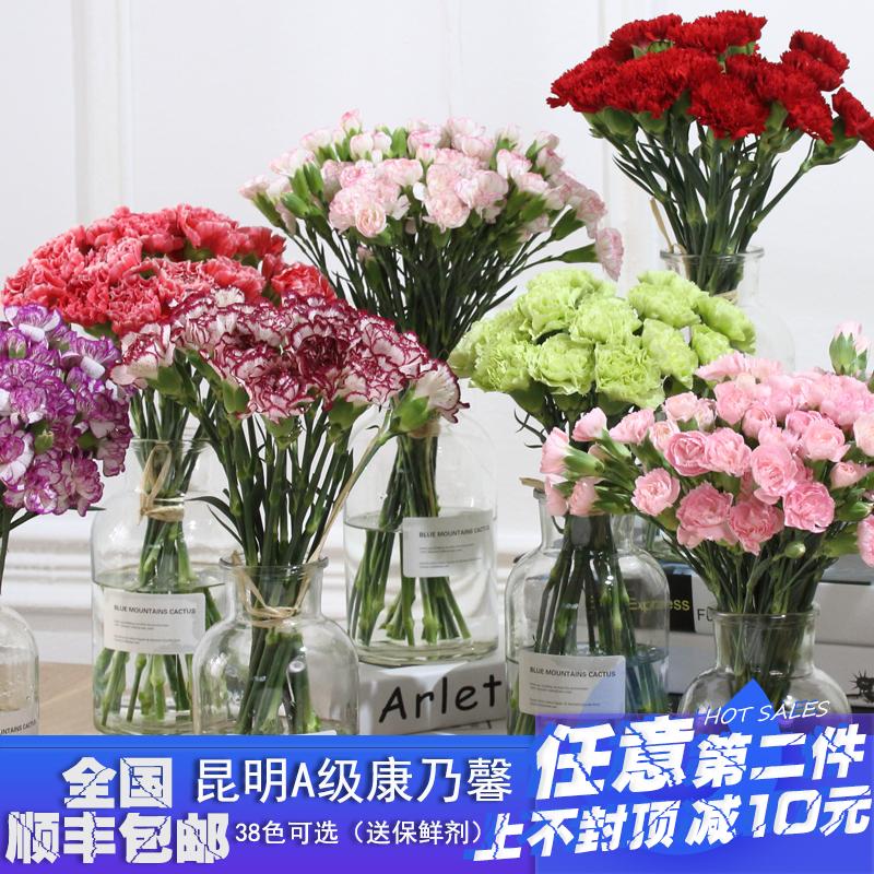 昆明康乃馨家庭情人节日七夕鲜花插花家用1扎顺丰包邮全国婚庆