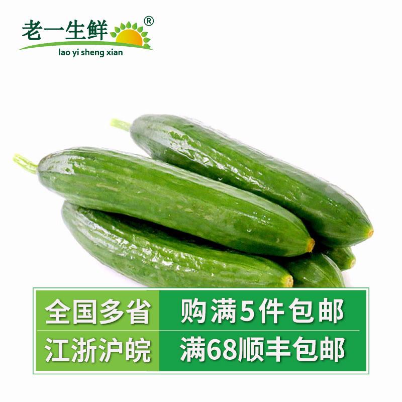 【老一生鲜】新鲜小黄瓜500g荷兰小黄瓜迷你黄瓜小黄瓜水果黄瓜