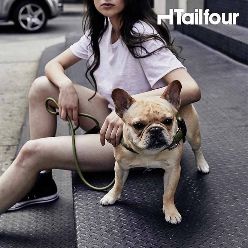 小型犬狗链质量如何