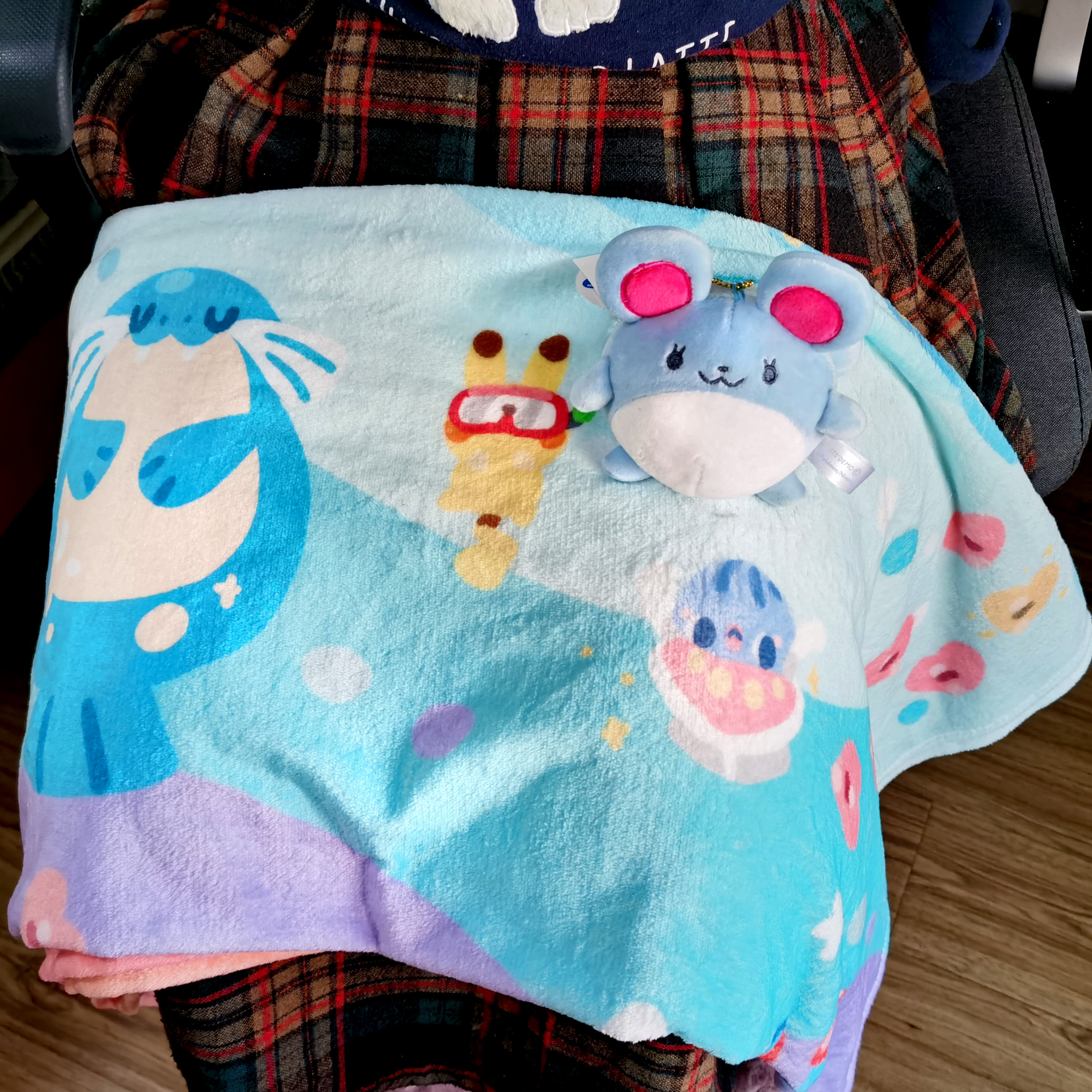Whats the leisure blanket, the blanket, the Pikachu blanket