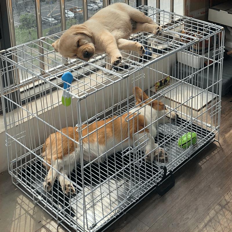 热销10件正品保证狗笼子法斗小型中型柯基带宠物狗狗