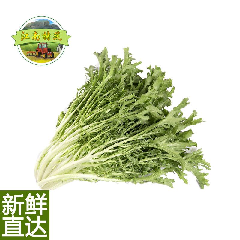 新鲜苦菊九芽苦苣苦叶生菜蔬菜需清洗沙拉菜和果蔬套餐即食500g