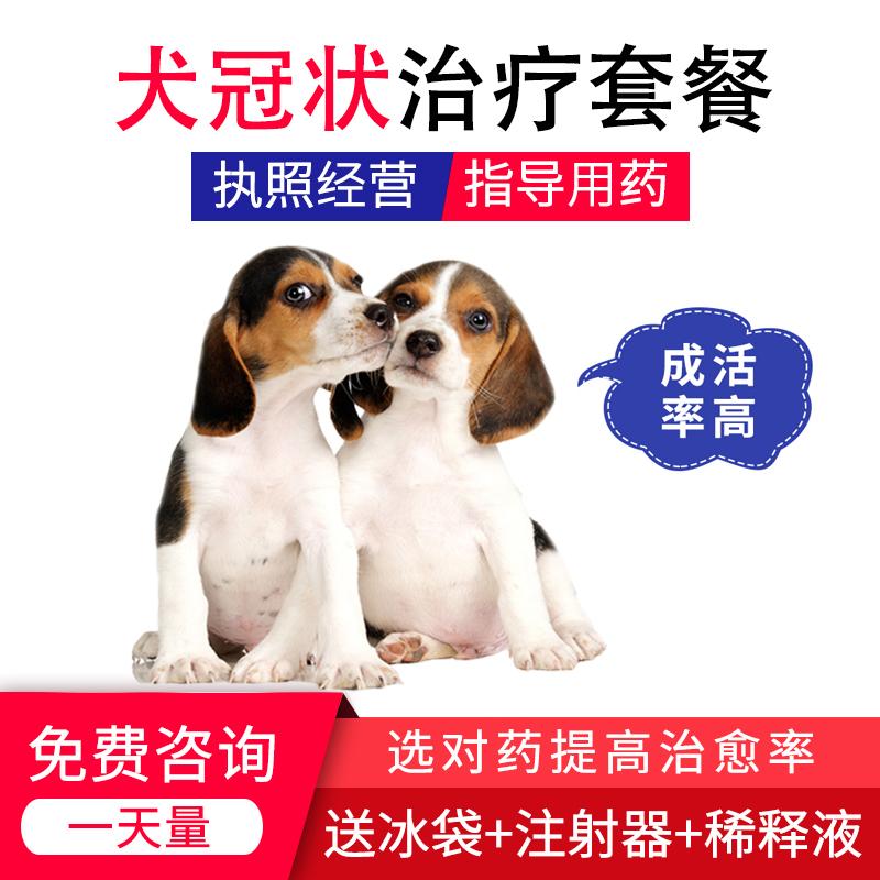 冠状病毒治疗套餐血清狗狗幼犬单抗呕吐干扰素拉稀腹泻便血药一天