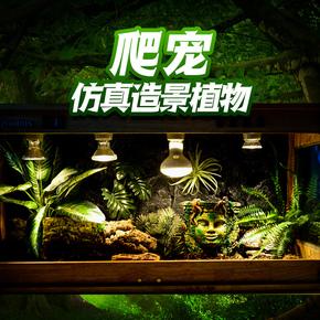 爬虫爬宠饲养箱造景生态雨林缸仿真植物陆龟蜥蜴变色龙沙漠装饰
