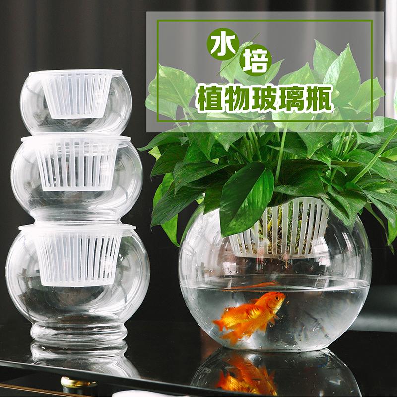 玻璃花瓶 水培植物玻璃瓶绿萝花瓶大号玻璃花盆圆球水养鱼缸器皿