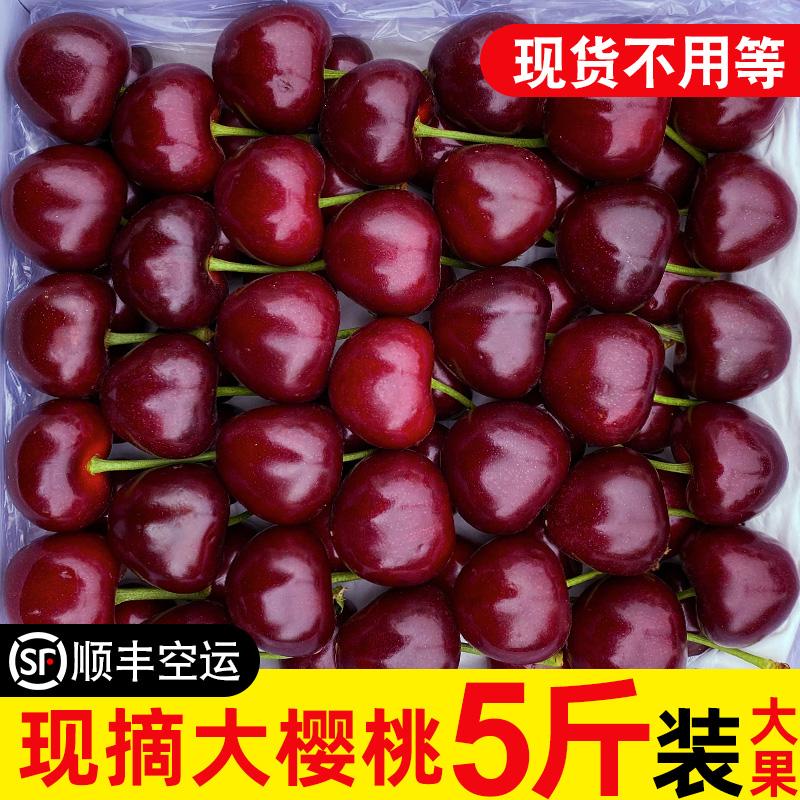 新鲜车厘子5斤装烟台美早10大樱桃