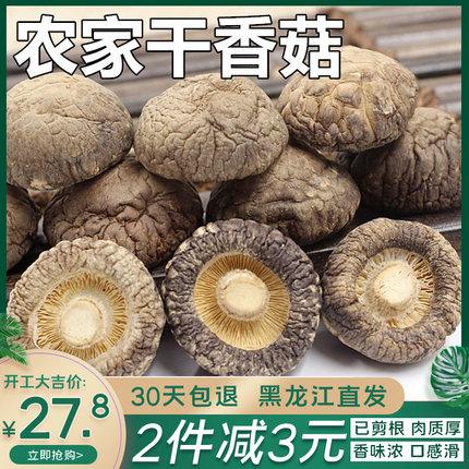 东北新货金钱菇小野生椴木香菇干货