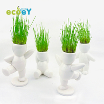 Ecoey Small green planting indoor potted grass head doll DIY green Planting desktop decoration small flower farmers Bonsai domestic plant