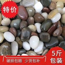 天然雨花石鵝卵石魚缸造景原石小白石子五彩石鵝軟石卵石彩色石頭