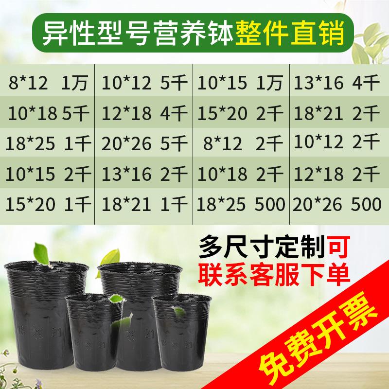 异型营养钵加高加厚苗木种植袋黑色塑料育苗盆异形营养杯育苗杯 Изображение 1