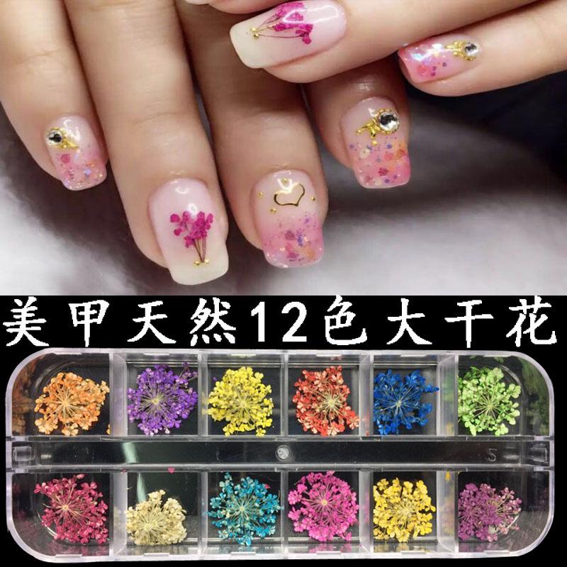 11月09日最新优惠美甲干花 立体干花 工具套装用品植物花瓣做指甲饰品12色干花贴片