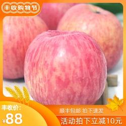 新果陕西延安洛川苹果水果红富士当季新鲜包邮20枚80整箱批送礼盒