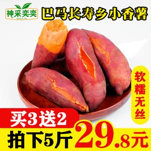 巴马小香薯新鲜现挖5斤红心红薯板栗农家金手指山芋番薯包邮