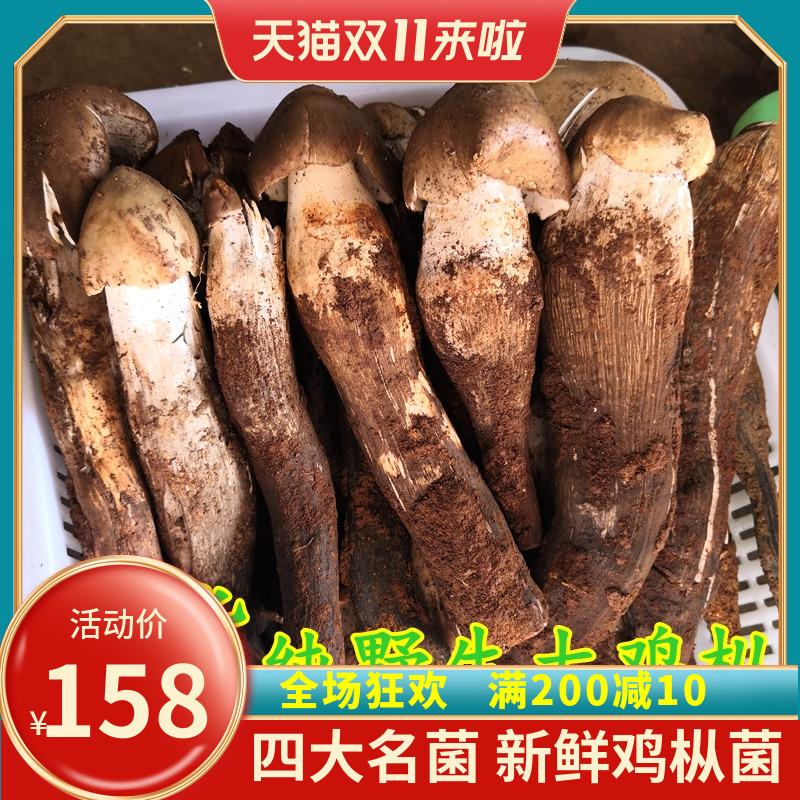 新鲜大鸡枞菌 云南特产克500装优惠山珍香菇精选货包邮野生爆款
