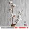 【棉花树枝】乡村天然木棉花花束干花真花客厅装饰插花拍摄道具