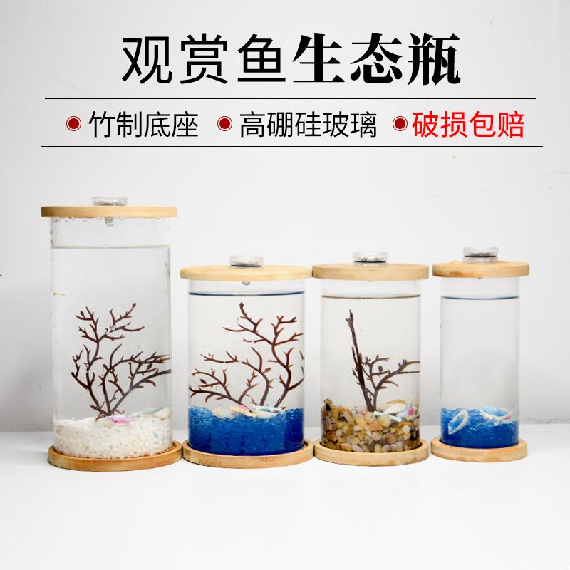 Креативные аквариумы Артикул 574366435342