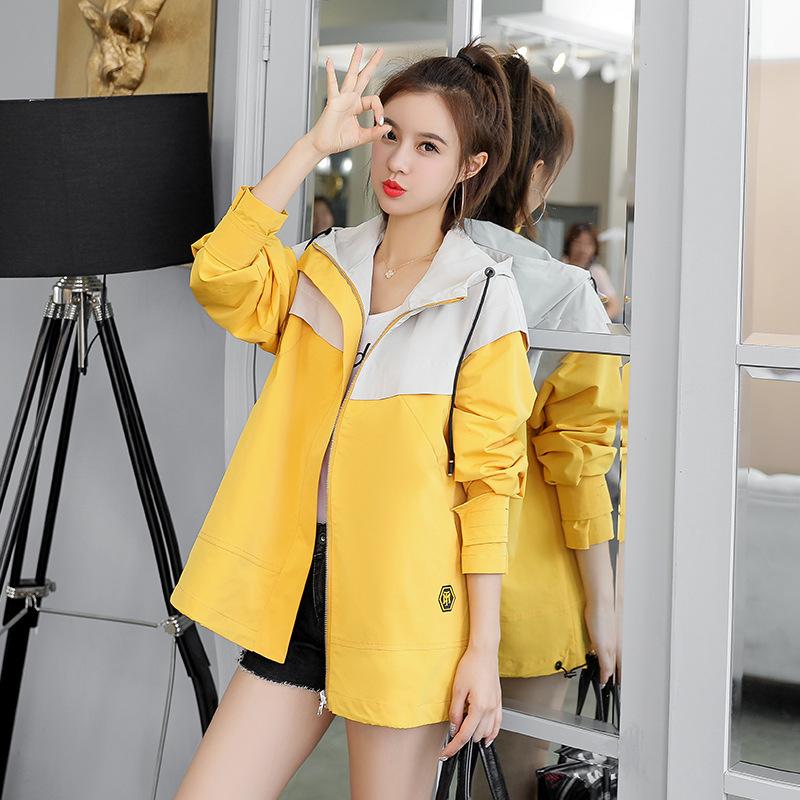 Short coat womens 2019 new spring and autumn clothing Korean Academy style loose short windbreaker sports casual jacket