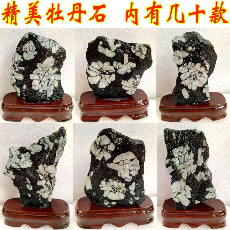天然牡丹石原石摆件精品菊花石花开富贵观赏石国画石图案石山石头