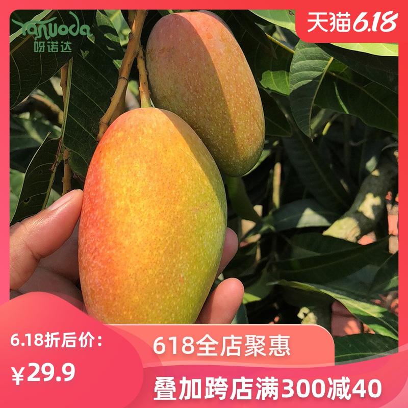 海南贵妃9斤净果包邮新鲜当季芒果