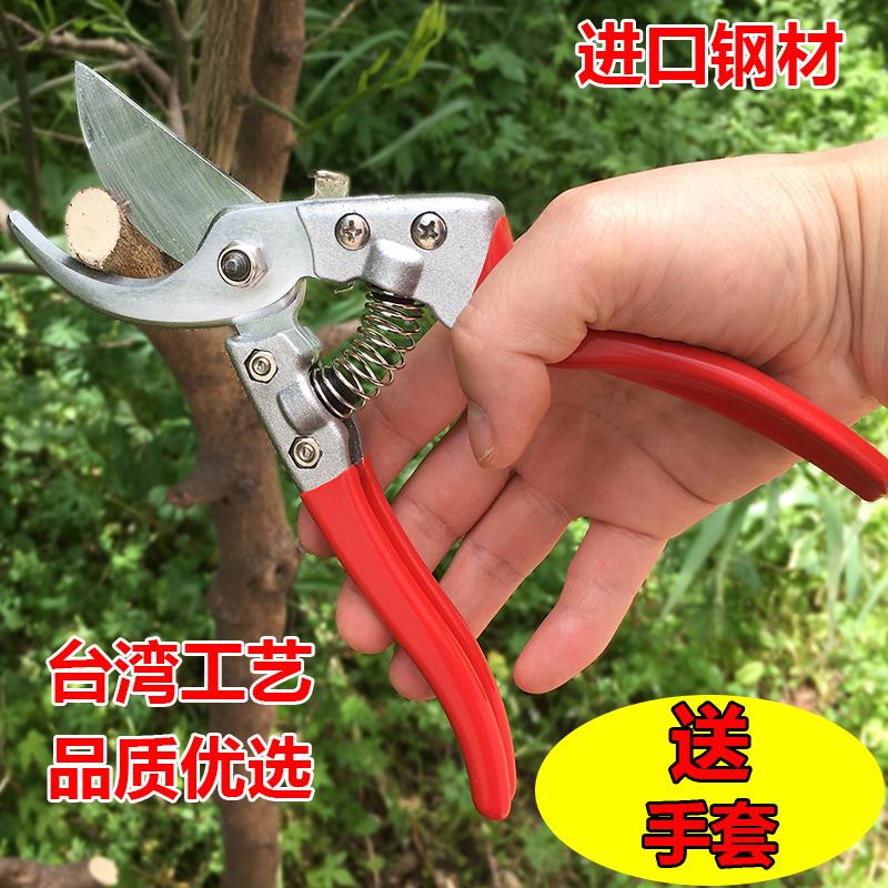 修枝剪花剪剪子粗枝剪园艺剪刀树枝剪刀园林剪果树花枝摘果整枝剪