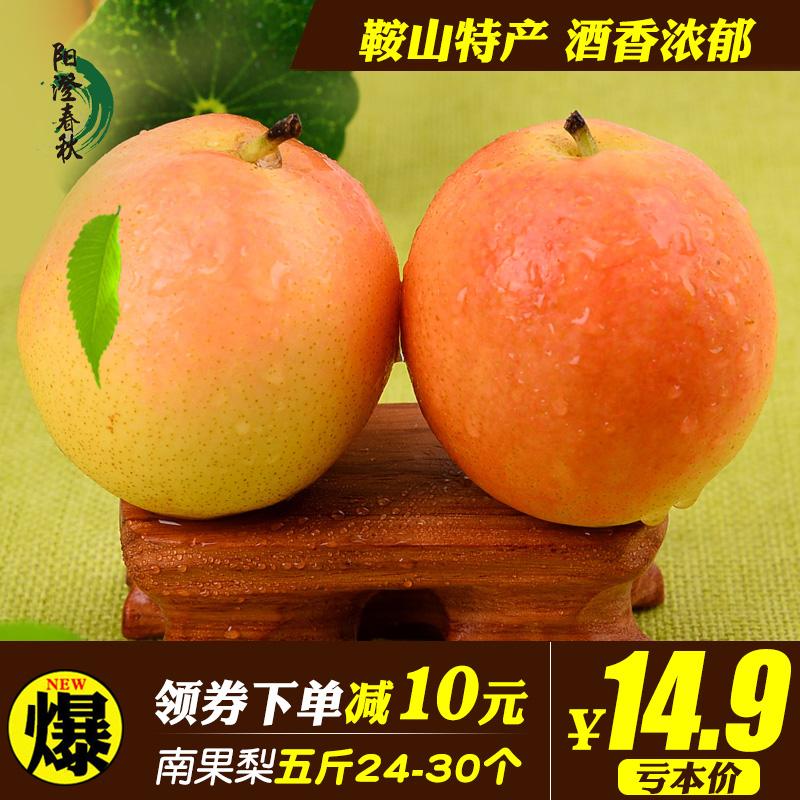 鞍山南果梨正宗南国梨东北特产10梨子新鲜水果苹果香水梨5斤包邮