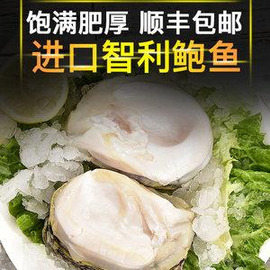 蟹优美智利进口大鲍鱼海鲜水产冷冻鲍鱼去壳饱满鲍鱼粒500g/袋