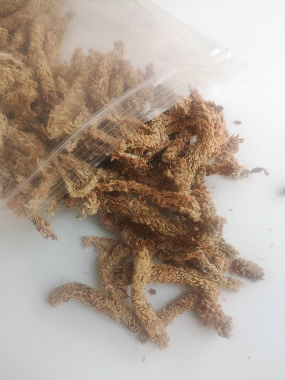 智利进口水苔干水苔干苔藓蝴蝶兰花兰草专用土多肉食虫植物营养土