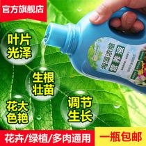 营养液养花肥料家用通用型盆栽植物绿萝发财树富贵竹多肉水培花卉