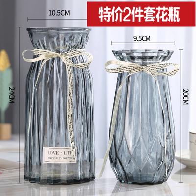 【二件套】欧式玻璃花瓶透明彩色水培植物花瓶客厅装饰摆件插花瓶
