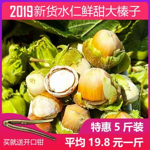 2019新货大榛子东北脱皮水仁水瓤生鲜新货原味500g