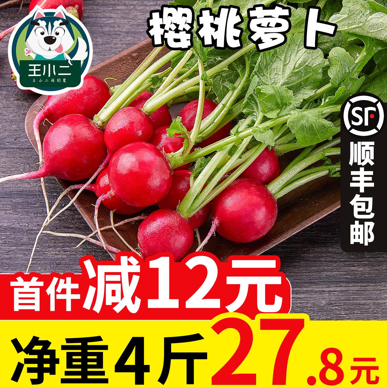 王小二 东北樱桃萝卜新鲜水果萝卜整箱红萝卜包邮蔬菜当季特产4斤