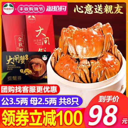 阳澄湖大闸蟹礼券1688型螃蟹提货券公3.5两 母2.5两8只中秋礼盒装