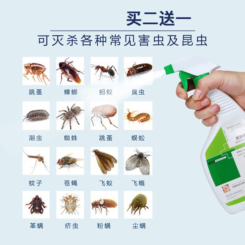 家用无毒除螨虫神器小飞虫蟑螂药