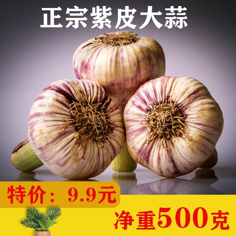 北京密云本地农家自种新鲜蔬菜大蒜头干蒜白皮紫红皮蒜大蒜500g