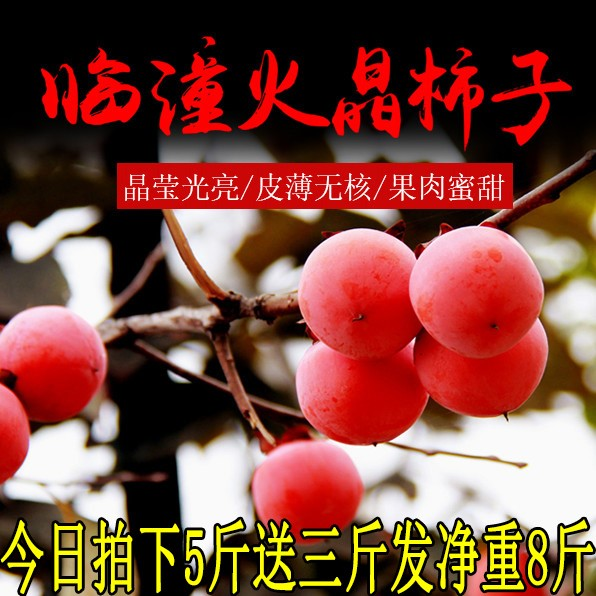 陕西临潼火晶柿子超甜西安特产农家自制软甜柿子新鲜水果5斤包邮
