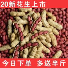 四粒红衣花生种子高产籽新鲜货晒干种植5斤红皮花生花生带壳生米