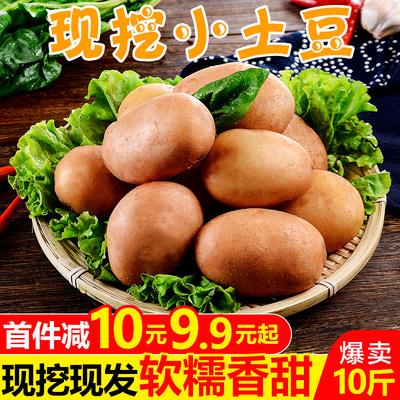 云南红皮小土豆10斤新鲜蔬菜黄心土豆农家自种马铃薯洋芋整箱包邮