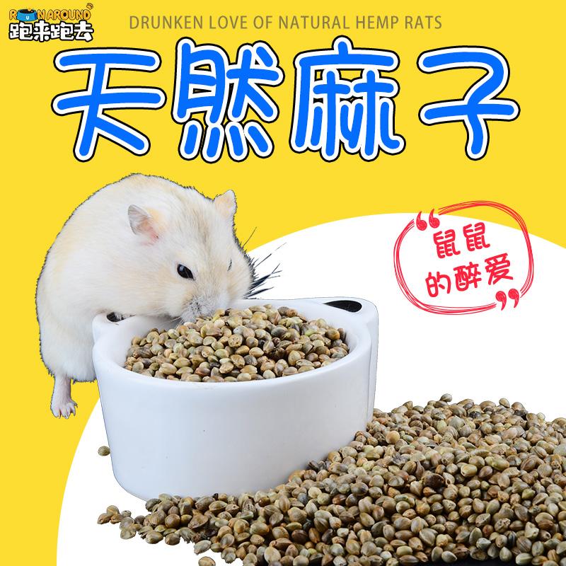 [跑来跑去宠物用品饲料,零食]仓鼠粮食麻子/麻籽火麻仁主粮鼠粮补充月销量35件仅售1.3元