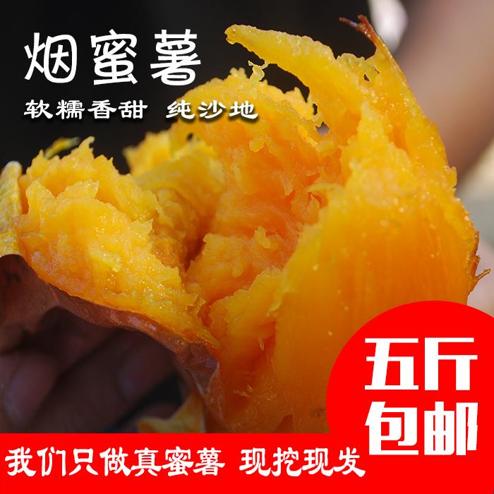 新鲜农家红薯地瓜番薯山芋红心蜜薯山东烟薯25富硒沙地烤地瓜5斤