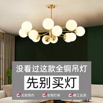 全铜北欧轻奢灯具客厅灯现代简约卧室家用餐厅灯饰魔豆吊灯分子灯