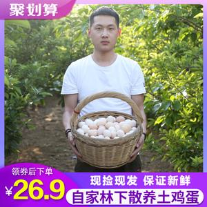 领5元券购买正宗林下新鲜40枚农家自养土鸡蛋