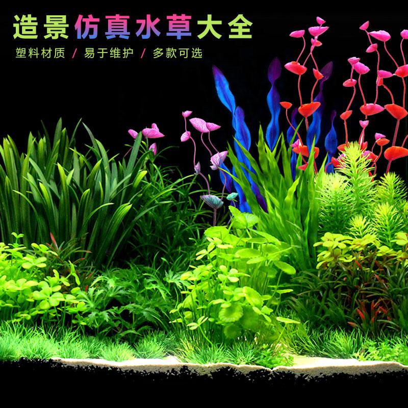 Наполнение для аквариума Артикул 597903068335