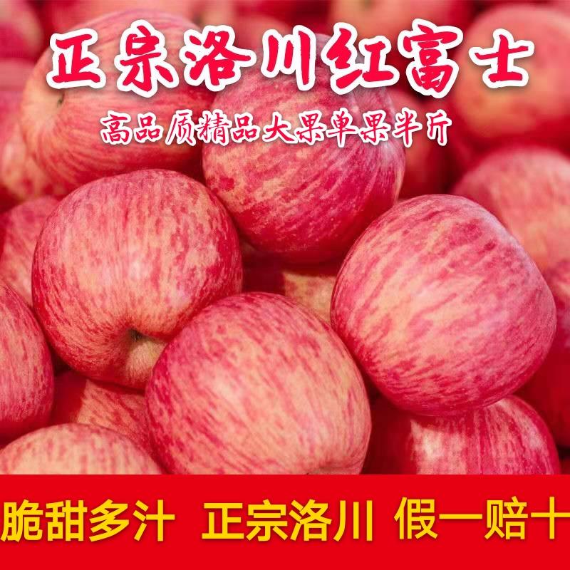热销25件假一赔十陕西洛川红富士苹果水果新鲜脆甜冰糖心一级大果当季整箱现货包邮